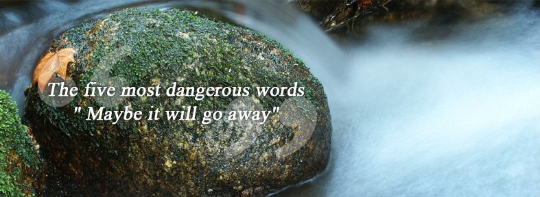 The five most dangerous words: maybe it will go away